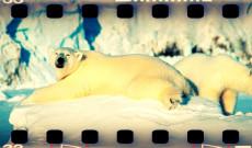 01×06 Svalbard + La Vuelta de los 25