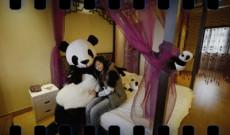 008. Un hotel regentado por osos panda (JUL-2013)