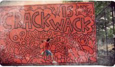 Crack is Wack (New York, Julio-2011)
