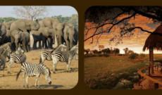 BOTSWANA + ZIMBABWE (ENE/FEB 2014)