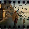 044. Diez Documentales de Viaje Imprescindibles (FEB-2014)