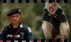 042. Doce buenas razones para Viajar a Tailandia (ENE-2014)