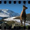 052. Vall de Boí: nieve, románico y naturaleza virgen (ABR-2014)