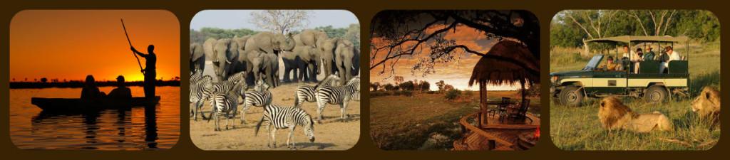 BOTSWANA+ZIMBABWE