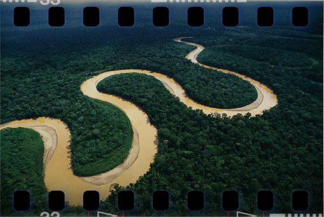 editAMAZONIA